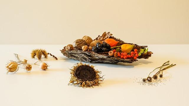 פירות יבשים – התרומה האמתית של הפירות היבשים לגוף